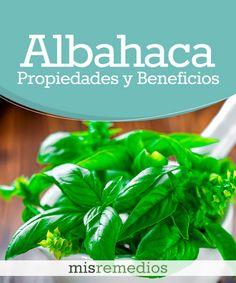#Albahaca - Propiedades y Beneficios #PlantasMedicinales