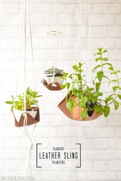 plumetisbazaar:  (via Slouchy Leather Sling Planter - Vintage Revivals)  インテリアに取り入れやすそう