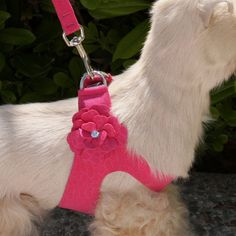 Flower Crystal Dog Harness