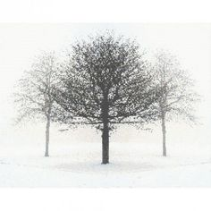 Counted Cross Stitch Pattern Trees in Winter PDF Email cs0934