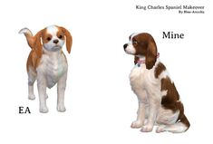 Blue Ancolia - King Charles Spaniel dog makeover So here is. The Sims, Sims 4 Mm, Sims 4 Pets Mod, Find My Pet, Sims4 Clothes, Sims 4 Cc Finds, Sims 4 Clothing, Spaniel Dog, Wild Dogs