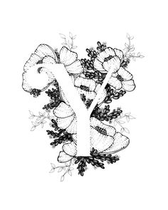 Letter Y print - Alphabet, Calligraphy, Typography, Monogram, Flowers - Black and White ink art prin Black Ink Art, Quilling Letters, Flower Alphabet, Letter Art, Calligraphy Art, Colouring Pages, Watercolor Print, Doodle Art, Etsy