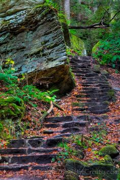 Woodland Stairs in Hocking Hills by Jim Crotty