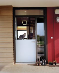 A Dutch door lets indoor and outdoor tasks flow together easily (with Yuri the cat standing guard). Photo by: Mark Mahaney | Read more: http://www.dwell.com/articles/Farm-Fresh.html