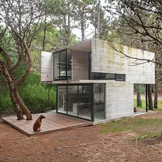 Casa H3 is built among pine trees by Argentinian architect Luciano Kruk within the seaside resort of Mar Azul near Buenos Aires, Argentina, 2015. . Photo by Daniela Mac Adden . #concrete #arch #archilovers #architecture #art #design #sculpture #buenosaires #summerhouse #argentina #seaside
