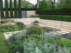 carex garden design by carolyn mullet bebe great