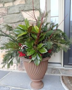 Christmas - Greens-magnolia-berries-urn-on-porch