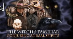 The Witches Familiar: Conjuring Animal Spirits $75