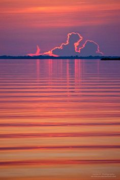 ~~Your Deepest Dreams ~ Sunset at the Negro River, Amazon Rain Forest, Brazil by oO-Rein-Oo~~