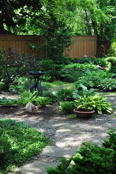 "Green sanctuary. Shade gardens = no mowing. I would like to a major portion of our yard like this! ""Mowing...Nobody got time for that!""  ; )"