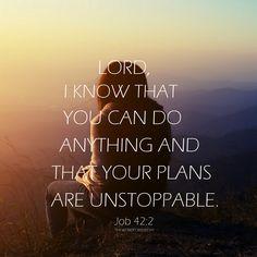 #Job 42:2 #bible verse #Bible Quotes #christian life