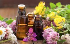 Acest remediu din bicarbonat de sodiu si ulei de castor poate vindeca chiar si 25 de boli: iata cum sa il folosesti