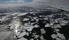 Sea level rise is becoming inevitable as huge areas of ice melt away. The short term evidence of coastal inundation must worsen leaving many countries with huge populations scrambling for higher ground. The ramifications will be enormous. All Time Low, All About Time, Sound Science, Sea Ice, Sea Level Rise, Inevitable, Global Warming, Mother Earth, Climate Change
