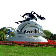 Sea World Orlando Florida....been here! I remember a woman diving for an oyster and I got a pearl out of the shell..how exciting is that when you are a little kid?!