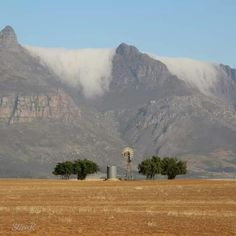 Rock Climbing, South Africa, Mount Rushmore, Mountains, Nature, Travel, Naturaleza, Trips, Climbing
