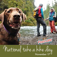 National Take a Hike Day is observed annually on November 17.  With over 60000 miles of trails in the National Trail System across the 50 states there is no lack of opportunity to take a hike.  Events around the country are scheduled today to celebrate Take a Hike Day.  Hiking can burn between 400-550 calories per hour.