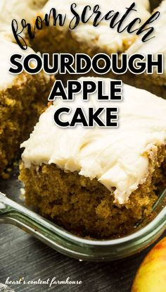 A recipe for sourdough apple cake: a moist and delicious cake made with shredded apples and your sourdough starter. Sourdough Cake Recipe, Sourdough Starter Discard Recipe, Sourdough Recipes, Bread Recipes, Starter Recipes, Apple Cake Recipes, Baking Recipes, Delicious Cake Recipes, Fermented Foods