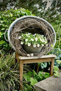 Real Plants, Growing Plants, Garden Types, Garden Art, Small Gardens, Outdoor Gardens, Hydroponic Gardening, Indoor Gardening, Plantation