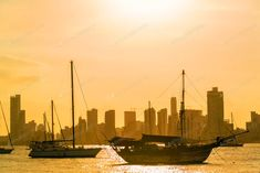 Boats and Skyscrapers photo by on Envato Elements Marina Bay, Colonial Architecture, Green Valley, Modern City, Top View, Aerial View, San Francisco Skyline, New York Skyline, Italy