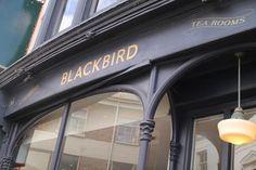Blackbird Tea Rooms, Brighton: See 348 unbiased reviews of Blackbird Tea Rooms, rated 4 of 5 on TripAdvisor and ranked #75 of 1,010 restaurants in Brighton.