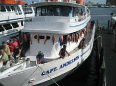 1000 images about panama city flordia on pinterest for Panama city beach party boat fishing