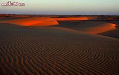 Fotografia al tramonto nel deserto occidentale del Sudan. La luce radente del sole colpisce la cresta di alcune dune di sabbia - Per ulteriori informazioni: I viaggi di Maurizo Levi ed in particolare il Tour del Regno dei Faraoni Neri