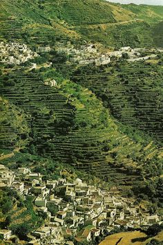 vintagenatgeographic:  White villages and chapels dot stair steppe hills still clothed in vineyards on the island of Naxos, Greece National Geographic | August 1972