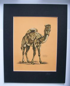 Camel Print Gladys Emerson Cook Dromedary One Hump Wild Animal Bookplate 1943 Matted by VintageVaultPrints on Etsy