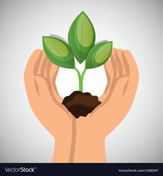 Hands holding plant green concept ecological vector image on VectorStock Flower Background Wallpaper, Flower Backgrounds, Save Earth Drawing, Cartoon Garden, Earth Drawings, Save Environment, Save Our Earth, Plant Vector, Stencil Art