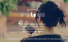 12 Experiencias Valenciso en Bodegas Valenciso (Ollauri, La Rioja)