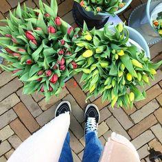 Y a que chica no le gustan las flores? ------------------------- #VisteRush #mujeres #love #fashion #outfit #visterush #moda #venezuela #maracay #Lunes #Aragua #Cagua #turmero #lavictoria #ellimon -------------------------
