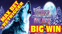 BIG WIN on the Timber Wolf slot machine!  MAX BET and a RETRIGGER!  #slot #slots #slotmachine #casino #lasvegas #vegasbaby #vegas #youtube #vegaslowroller