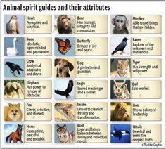 Animal Spirit Guides & their attributes