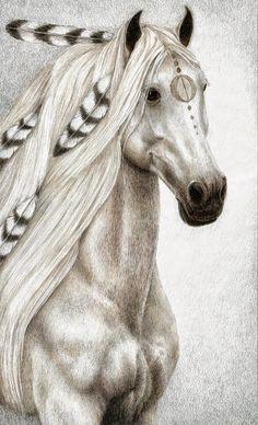 caballos indios - Buscar con Google