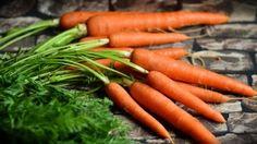 Preview wallpaper carrots, vegetables, harvest 1920x1080