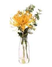 Australian House & Garden | Shop Australian House & Garden Homeware Online | Myer