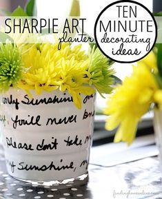 10 Minute Decorating Ideas – Sharpie Art Planter