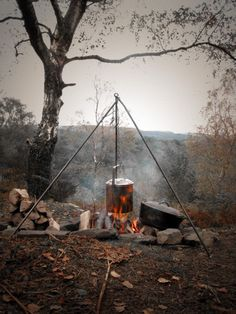 Woodland, crackling fire, rustic camping, cooking