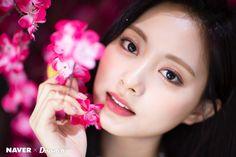 Nayeon, K Pop, Taiwan, Tzuyu Twice, Dahyun, Jennie Blackpink, Fancy, One In A Million, Hd Photos