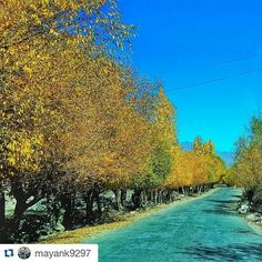 #Repost @mayank9297 with @repostapp  Follow back for travel inspiration and tag your post with #talestreet to get featured.  Join our community of travelers and share your travel experiences with fellow travelers attalestreet.com !! Roads where you find inner peace !! हमलय  #roadtrip #roadtrippin #mahindra #scorpio #4wd #rangada #himalayas #raidthehimalaya #ttot #tripoto #tale_street #incredibleindia #indiainclicks #instahimalayas #instanature #travrelous #travel #traveling #travelogue…