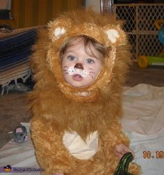 "Xander the ""furr-ocious"" lion - Halloween Costume Contest via @costumeworks"
