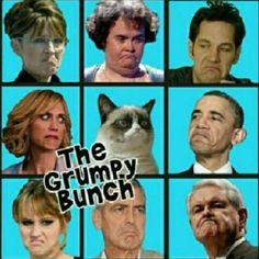 Grumpy cat, grumpy cat meme, grumpy cat humor, grumpy cat quotes, grumpy cat funny …For the best humour and hilarious jokes visit www. Grumpy Cat Quotes, Funny Grumpy Cat Memes, Funny Cats, Funny Jokes, Grumpy Kitty, Fun Meme, Cat Jokes, It's Funny, F2 Savannah Cat