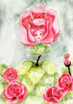 White Rose in Pink by Monra.deviantart.com on @deviantART