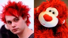 QUIZ: Is this Michael Clifford's hair or a cuddly toy?   - Sugarscape.com