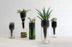 12 Creative and Useful DIY Ideas with Bottles