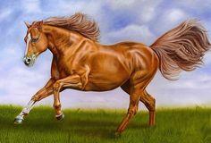 Rare Animals, Animals And Pets, Painted Rock Animals, Arabian Art, Horse Artwork, Horse Drawings, Pet Rocks, Horse Sculpture, Cross Stitch Animals