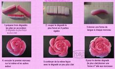 TUTO CANE ROSE IN MY OWN WAY, THE FILE