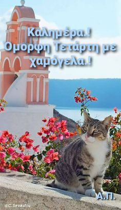 Wednesday, Greece, Greece Country