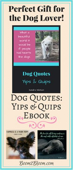 Dog Quotes: Yips & Quips ebook contains 30 quotes about the unconditional love, pure soul and absolute devotion of dogs. Each quote is written on a gorgeous image of a dog or fun graphics.  Print off your eBook as a book or by individual pages for framing.  #Dogs #DogQuotes #Ebook