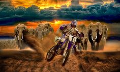 The final lap by Radu Muresanu on 500px